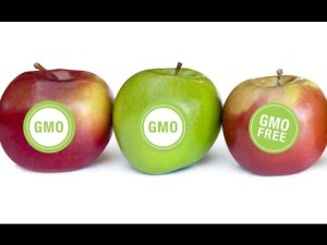 apples gmo labeling