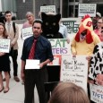 A wide range of consumer, family farm, environmental, Internet freedom, labor and other organizations held a press eventoutside the Trans-Atlantic Free Trade Agreement (TAFTA) negotiating summit in Arlington, Virginia onMay […]